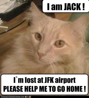 I`m lost at JFK airport PLEASE HELP ME TO GO HOME !