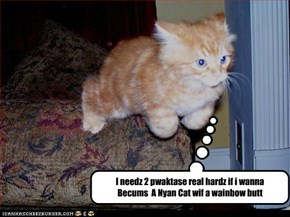 I needz 2 pwaktase real hardz if i wanna  Becums  A Nyan Cat wif a wainbow butt