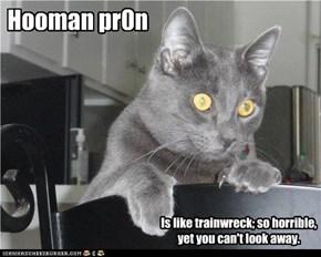 Hooman pr0n