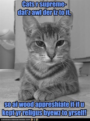 intolerant kitteh iz intolerant