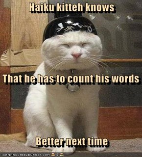Haiku kitteh knows    That he has to count his words    Better next time