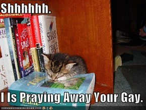 Shhhhhh.  I Is Praying Away Your Gay.