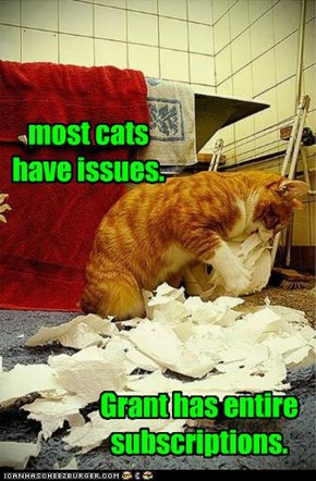most cats have issues.