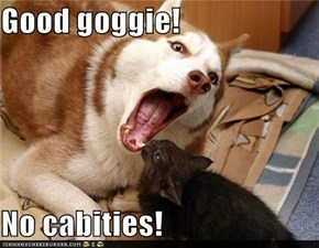 Good goggie!  No cabities!
