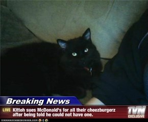 Breaking News - Kitteh sues McDonald's for all their cheezburgerz after being told he could not have one.