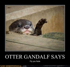 OTTER GANDALF SAYS