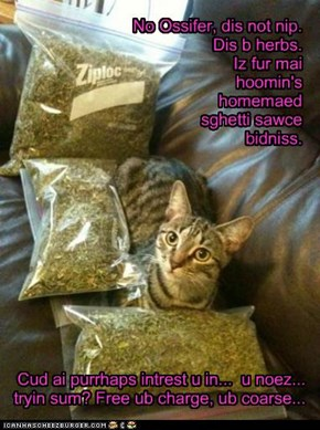 And thus ended Tigger's short-lived career as a nip dealer...