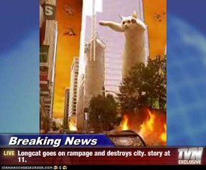 Breaking News - Longcat goes on rampage and destroys city. story at 11.