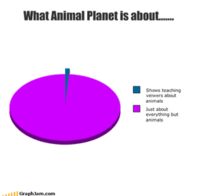 What Animal Planet is about.......