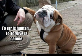 To err is human... To  forgive is canine