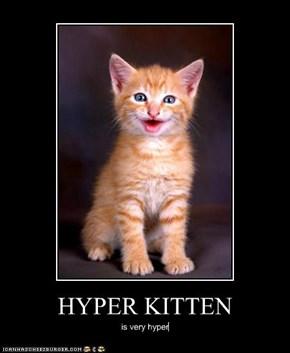 HYPER KITTEN