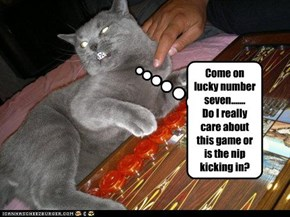 Come on lucky number seven....... Do I really care about this game or is the nip kicking in?