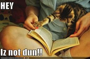 HEY  Iz not dun!!