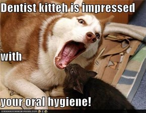 Dentist kitteh is impressed with your oral hygiene!