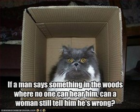 If a man says something in the woods where no one can hear him, can a woman still tell him he's wrong?