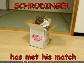 SCHRODINGER    has met his match