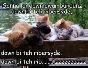 Gonna lai down owur burdunz ,