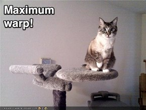 Funny Pictures - Star Trek Enterprise Cat Scratching Post
