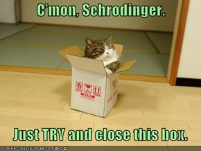 C'mon, Schrodinger.     Just TRY and close this box.