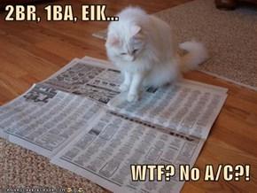 2BR, 1BA, EIK...                                    WTF? No A/C?!