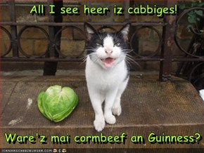 All I see heer iz cabbiges!    Ware'z mai cormbeef an Guinness?