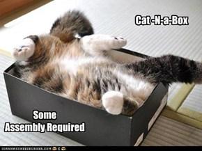 Cat -N-a-Box