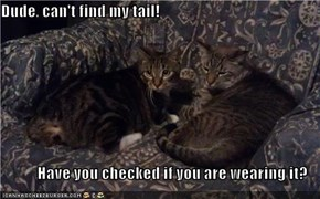 Dude, can't find my tail!  Have you checked if you are wearing it?