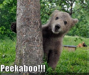 Peekaboo!!!