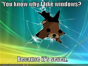 You know why I like windows?  Because it's seven.