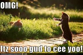 OMG!  Itz sooo gud to cee yoo!!