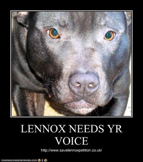 LENNOX NEEDS YR VOICE