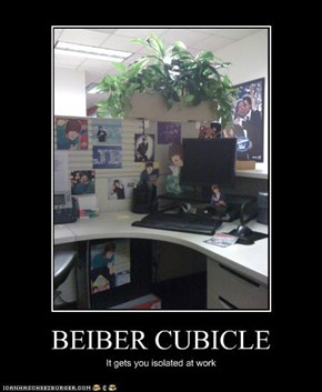 BEIBER CUBICLE