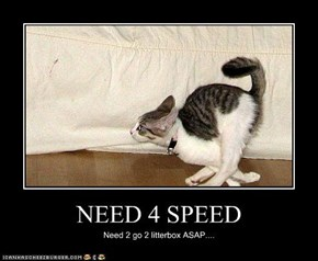 NEED 4 SPEED