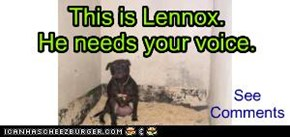 This is Lennox