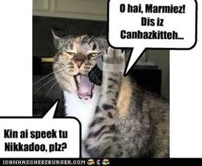 O hai, Marmiez!