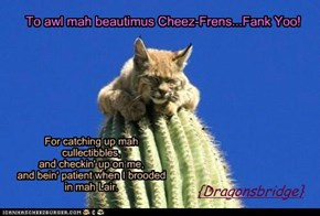 Fank Yoo, my Frens!