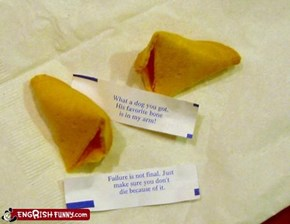 Fortune Cookie Friday: Wisdom for FAIL Blog