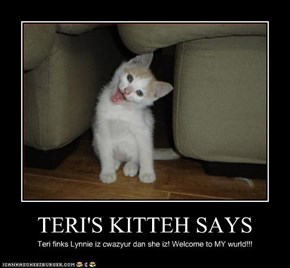 TERI'S KITTEH SAYS