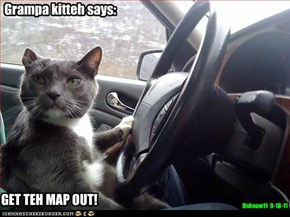 Grampa kitteh says: