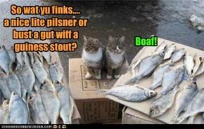 Wat goez wiff fishes?!