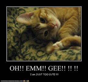 OH!! EMM!! GEE!! !! !!