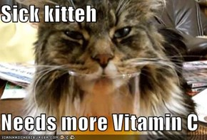 Sick kitteh  Needs more Vitamin C
