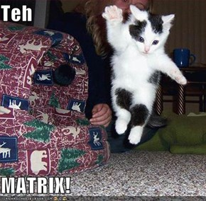Teh  MATRIX!