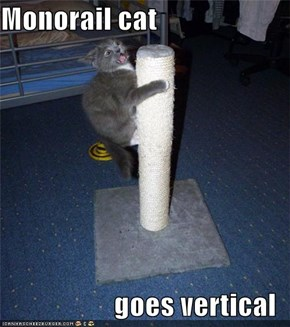 Monorail cat  goes vertical