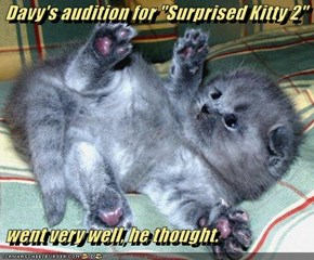 "Davy's audition for ""Surprised Kitty 2""   went very well, he thought."