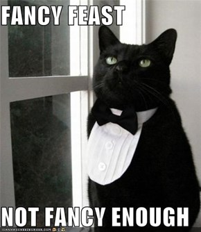FANCY FEAST  NOT FANCY ENOUGH