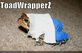 ToadWrapperZ