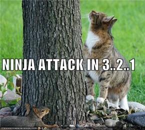 NINJA ATTACK IN 3..2..1