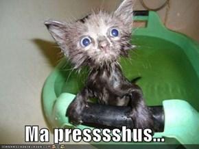 Ma presssshus...