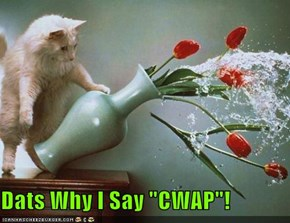 "Dats Why I Say ""CWAP""!"